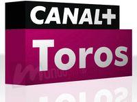 canal plus toros