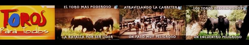 video toros para todos