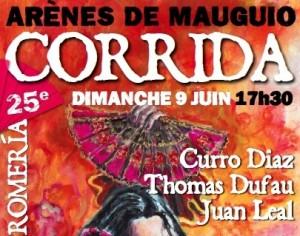 Affiche Romeria 2013