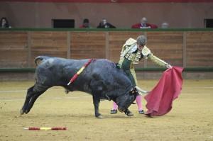 arnedo-fernando-rey_adolfo