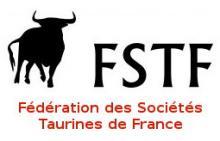 logo_fstf