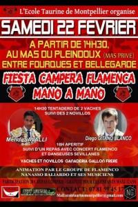 Fiesta Campera_ecole taurine montpellier
