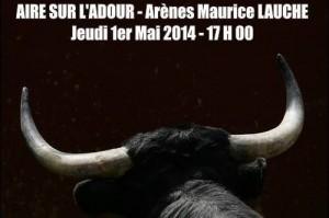 aire-sur-adour-novillada2014