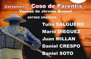 parentis-tienta2014