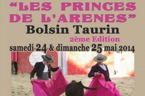 Arles-Bolsin_2014_prince