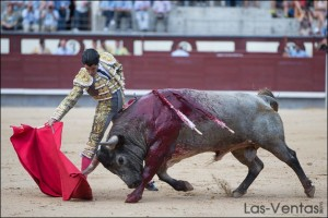 Madrid - Marc Serrano - confirmation