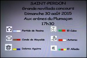 Saint Perdon-ganaderias 2015