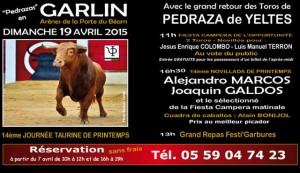 garlin-programme2015