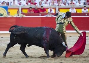 Pamplona_Jimenez-Fortes2015