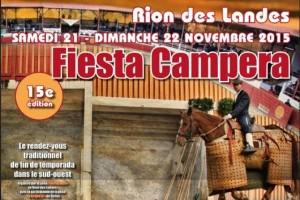 Rion_fiesta campera2015