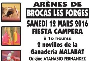 Brocas-fiestacampera2016