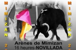mimizan-affiche aficion2016