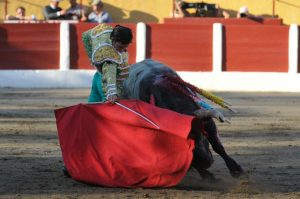 Céret-Aguilar-saltillo
