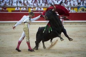 Pamplona-Cebada2016