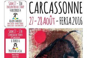 carcassonne-affiche2016