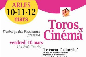 Arles-toros et cinéma2017