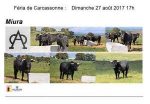Carcassonne-miura2017