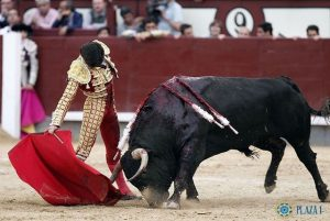 Madrid-Garrido-FuenteYmbro