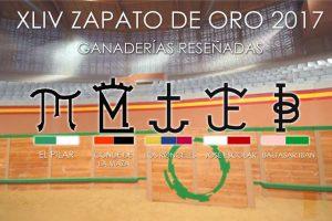 Arnedo-Zapoto-Oro2017