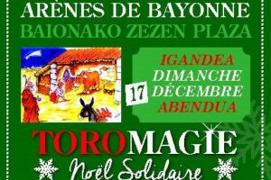 Bayonne-toromagie-2017