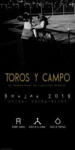 Boujan-affiche-novillos2018