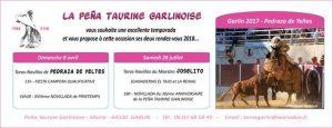 Garlin_carte voeux 2018