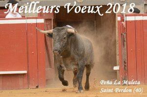 Saint Perdon-voeux2018