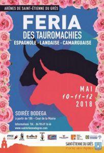 Saint Etienne-affiche2018