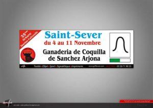 Saint Sever-jeune aficion-ganaderia