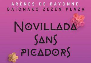 Bayonne-nsp-affiche-juillet