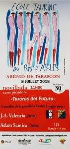 Tarascon-NSP2018