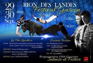 Rion-affiche-festivalGascon