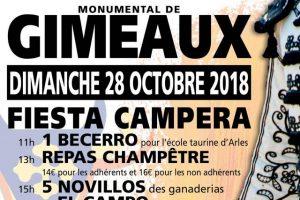 gimeaux-fiestaCampera2018