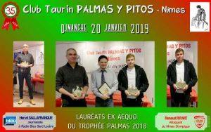 Nimes-CT-palmas2018