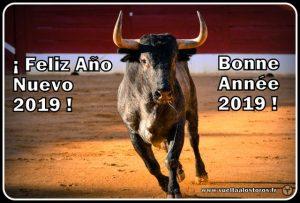 Voeux 2019-Vuelta A Los Toros