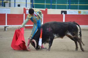 Raphele les Arles-Raul Puebla