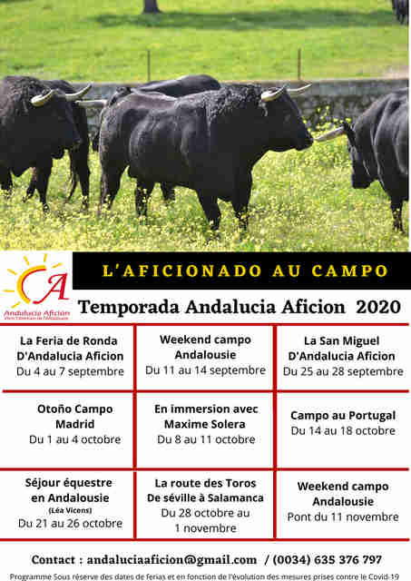 Andalucia-campo2020