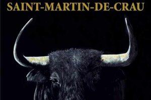 Saint Martin-Feria-octobre2020