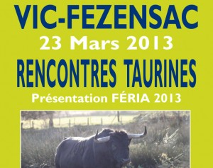 rencontre-taurines-vic-2013