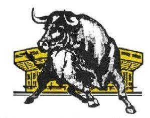pena-a-los-toros