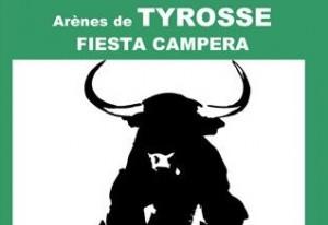 tyrosse-fiesta campera