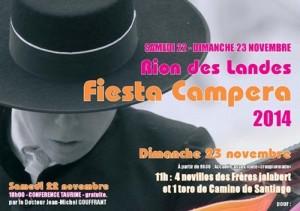 Rion-affiche Fiest campera2014