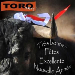 Voeux2015-ToroMag
