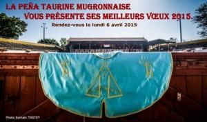 voeux2015-mugron