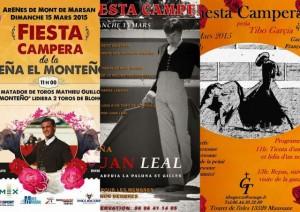 Fiesta Campera-15mars