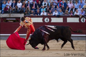 Madrid_Castella_El Torero