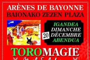 bayonne-toromagie2015