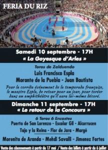 Arles-feriadu riz2016