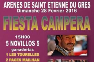Saint Etienne du Gres-fiesta campera2016