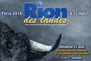Rion-affiche2016